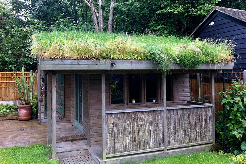 Attirant Green Roof Training In London
