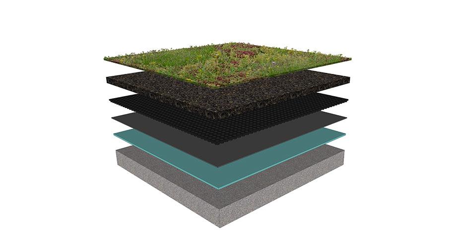 les diff rents types de toits verts en fonction des plantes. Black Bedroom Furniture Sets. Home Design Ideas