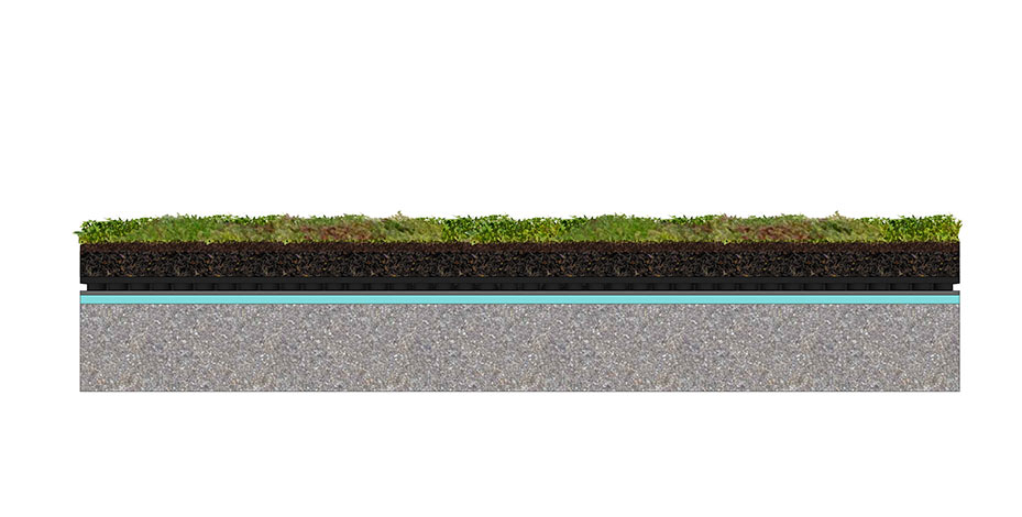 Green Roof Types According To Planting Needs