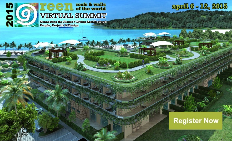 Virtual Green Roof Summit Small Scale