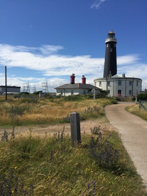 Dungeness a place for green roof plants