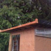 A small green roof in Ridgefield WA