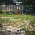 Beyond roofs: Brownfield gardening