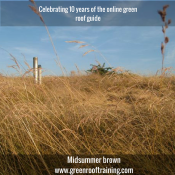 The grass roof at Hilldrop – Celebration 1