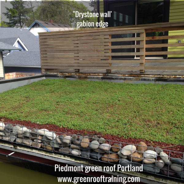 gabion edge - Piedmont green roof Portland