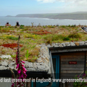 Clifftop green roof – Cornwall
