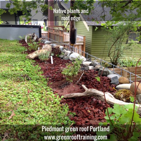 ecoroof Piedmont Portland Oregon