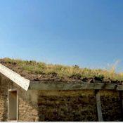 A sod roof in Nebraska