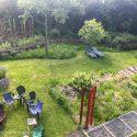 Lets make brownfield gardens part of urban landscapes